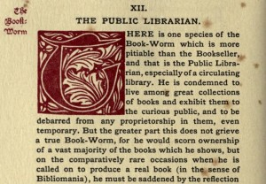 The Public Librarian