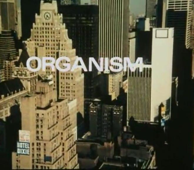 Friday Video: Organism