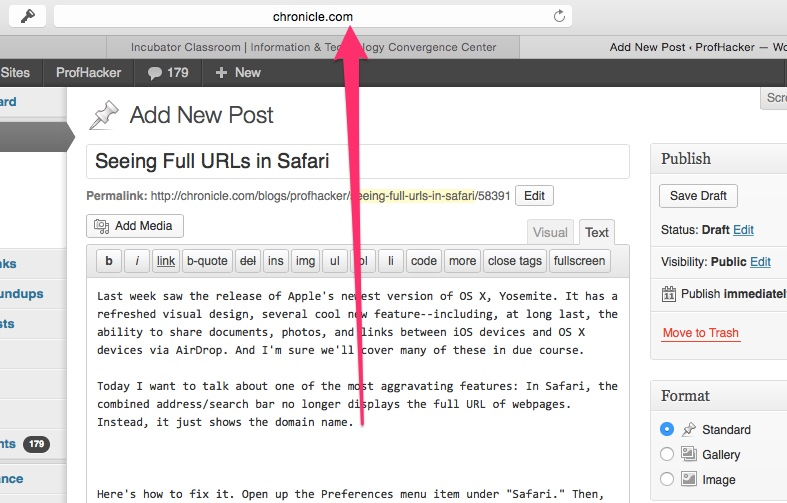 Tuesday Tech Tip: Seeing Full URLs in Safari