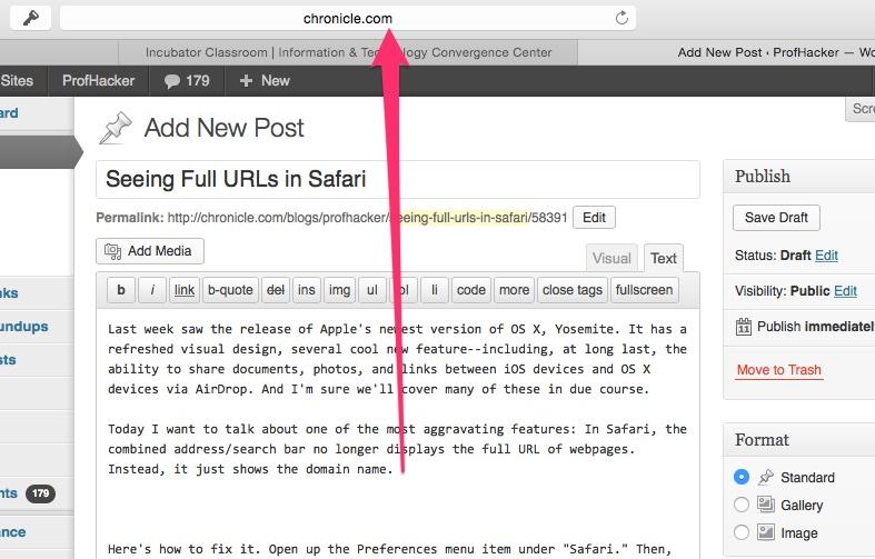 Tuesday Tech Tip: Seeing Full URLs in Safari