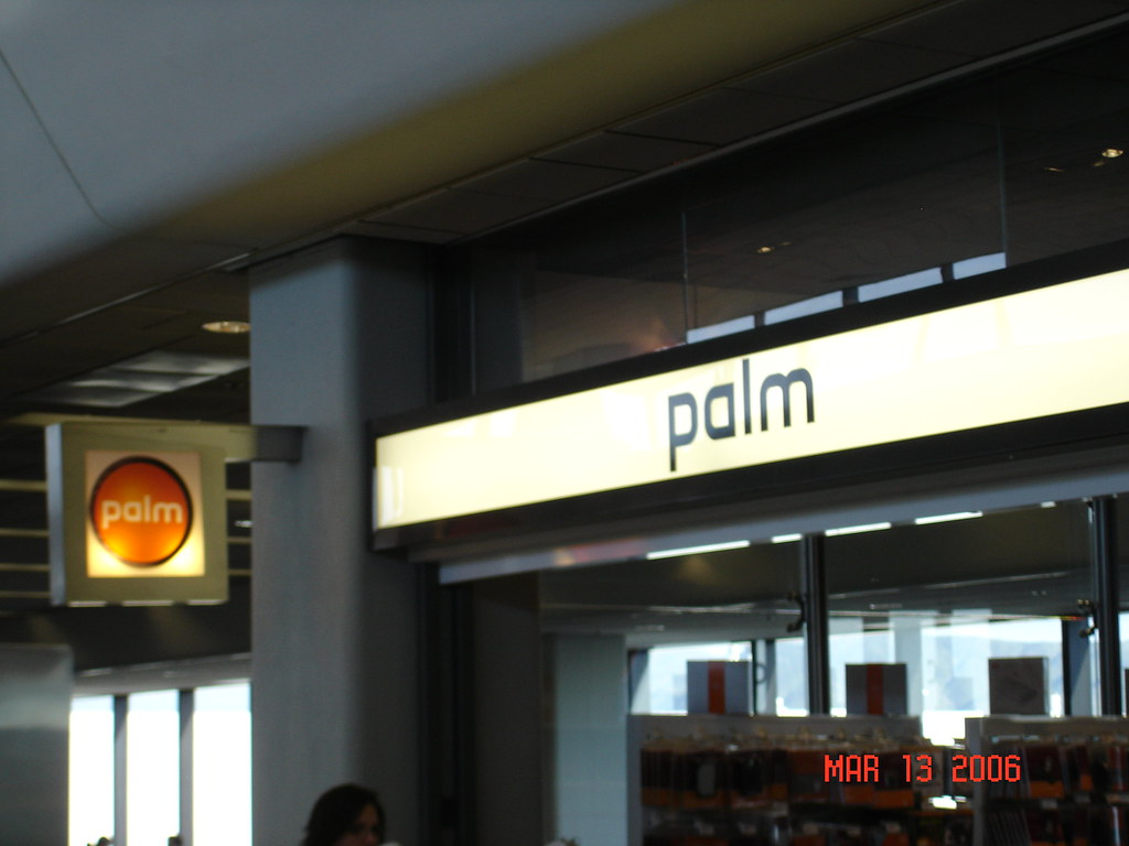 Throwback Thursday: palm store